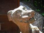 IMG_1007狛犬.JPG