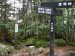 IMG_1887丸山三角点.JPG