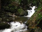 IMG_2384滝.JPG