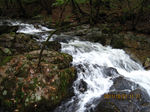 IMG_2410滝.JPG