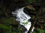 IMG_2425滝.JPG
