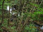 IMG_2429乾杯の滝.JPG