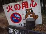 IMG_4115タヌキ.JPG