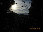 IMG_5931蜘蛛の巣.JPG