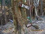 IMG_7363北沢分岐.JPG