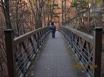 IMG_7720吊り橋.JPG