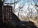 IMG_8053セキレイ石.JPG