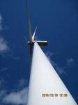 IMG_8253風車.JPG