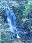 IMG_8310玉簾の滝.JPG