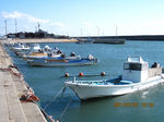 IMG_8596漁港.JPG