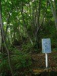IMG_9039山道.jpg