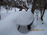 IMG_9143雪.JPG