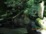 Img_0405金性水.jpg
