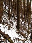 Img_5183雪.jpg