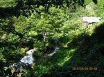 Img_6343茗荷川.jpg