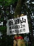 Img_8431sanmei.jpg